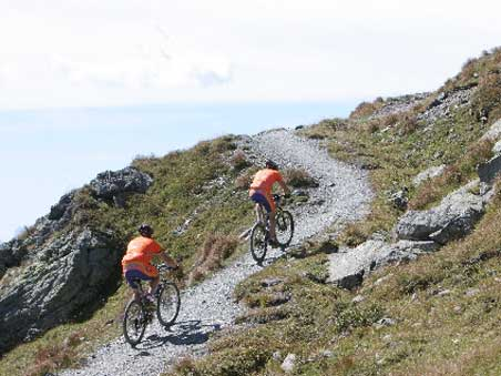 Mountainbikers in Comelico