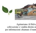 AGRITURISMO AL BELVEDERE